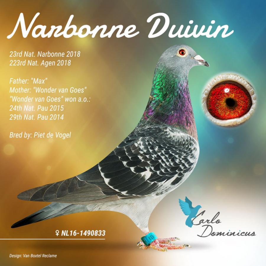 Site- ul de intalnire Narbonne
