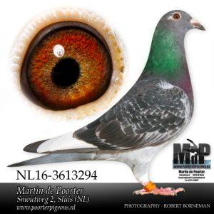 wp-image-22076 alignleft