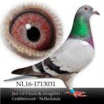 alignnone size-thumbnail wp-image-22357 alignleft