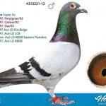 alignnone size-thumbnail wp-image-22401 alignleft