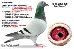 wp-image-22491 alignleft